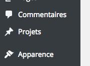 custom-post-admin-wordpress